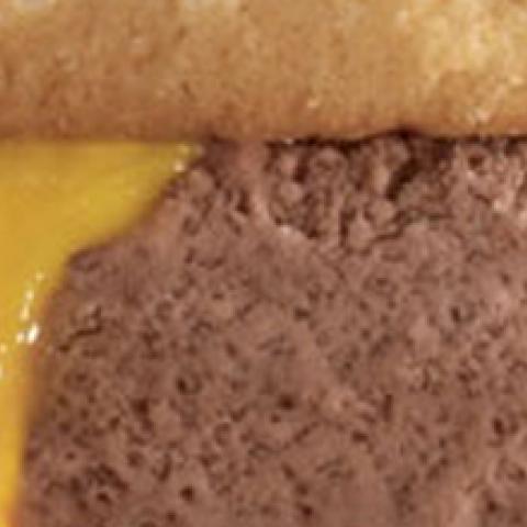 Burger Ice Cream