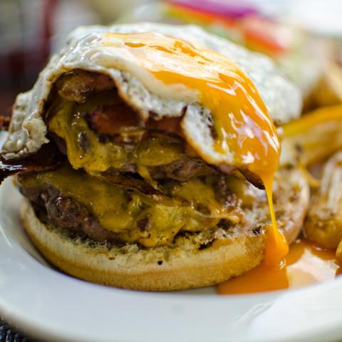 Burger Appaloosa